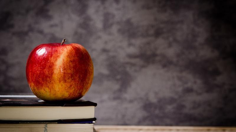 Как проходят семинары для бухгалтеров в Учебном центре «Что делать Квалификация»