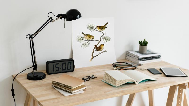 Кабинет мечты, или как правильно обустроить рабочее пространство